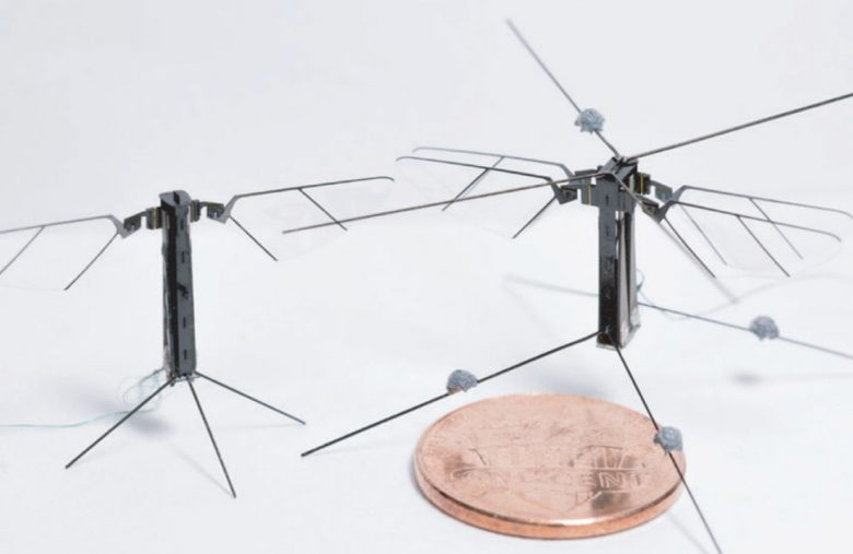 Scientists create a four-winged robot insect that flies with grace
