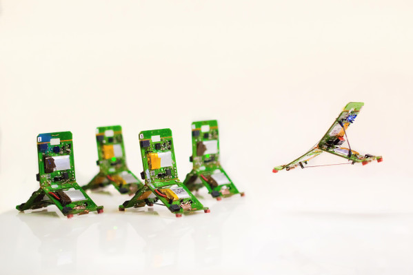 These robo-ants can work together in swarms to navigate tricky terrain