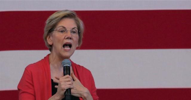 Warren Campaign's Volunteer Fellowship Program a 'Scam,' Applicants Claim