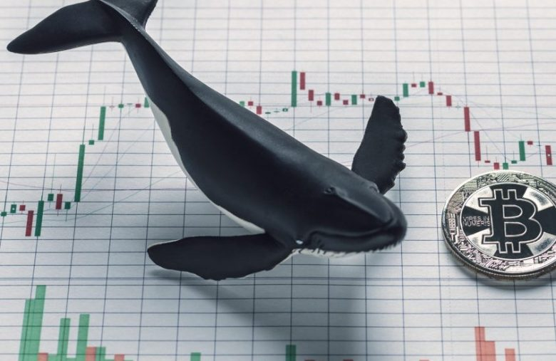 bitcoin-flash-crash-proves-whales-are-messing-with-us