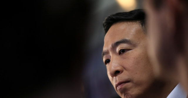 Andrew Yang Slams 'Reality TV Show' Presidential Elections