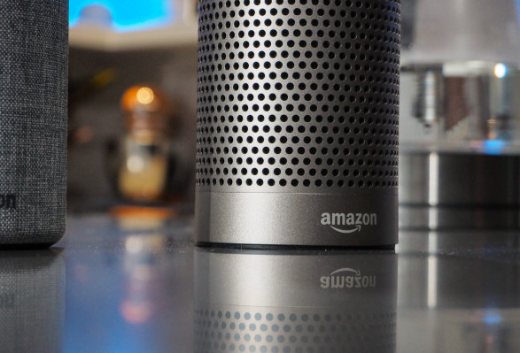 Amazon quietly adds 'no human review' option to Alexa as voice AIs face privacy scrutiny