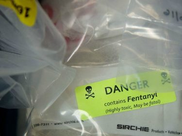 Gordon Chang: China's Communist Regime 'Happy to Kill Tens of Thousands of Americans' via Fentanyl