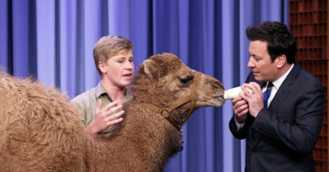 PETA Demands 'The Tonight Show' Investigation over Celebs Playing with Animals