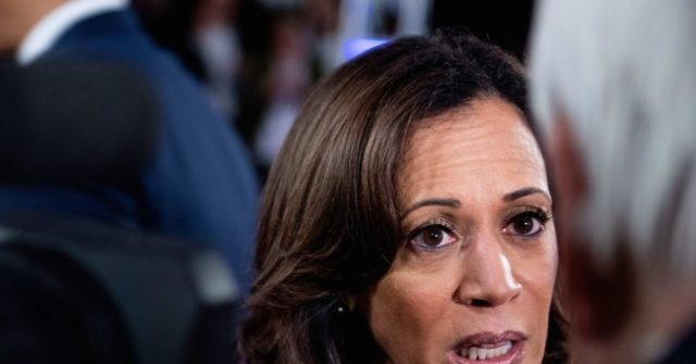 Harris: Trump's Immigration Raids a 'Campaign of Terror'