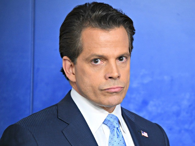 Anthony Scaramucci: Trump's Own Staff 'Absolutely Hates the Guy's Guts'