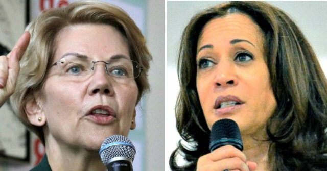 National Poll: Elizabeth Warren Surges, Kamala Harris Nosedives