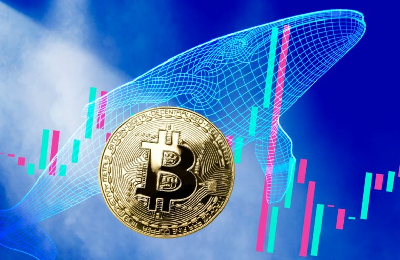 bitcoin-whale-moves-a-cool-billion-dollars-for-a-mere-$700-fee
