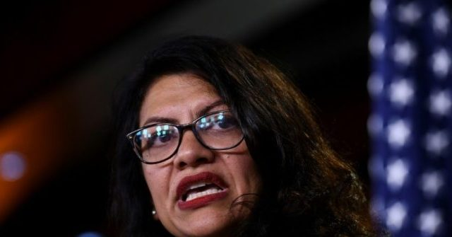 Tlaib Calls for a 'Political Revolution' and Complete Transformation of Political System