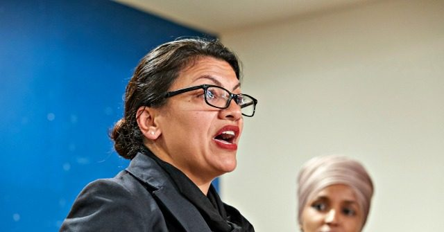 Tlaib in 9/11 Tribute: People Threatened Arab Organization That Employed Me After Attacks