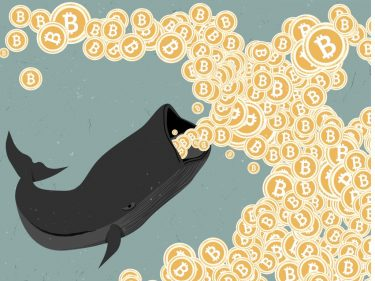how-to-trade-bitcoin-like-a-whale,-not-a-guppy