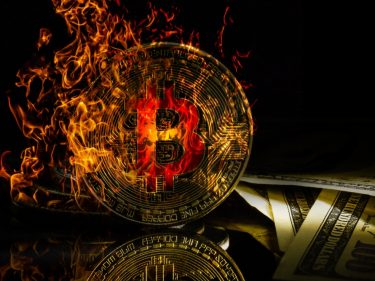 bitcoin-price-suddenly-crashes-to-$8,000-in-self-fulfilling-prophecy