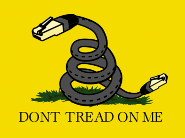 Court says FCC's 'unhinged' net neutrality repeal can't stop state laws