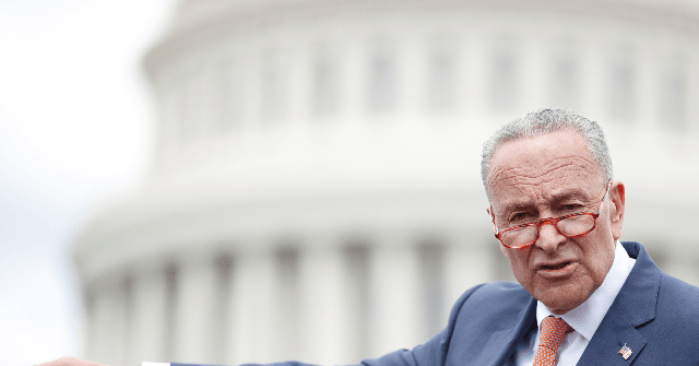 Schumer: I Worry Trump Might Want Shutdown to Distract from Impeachment | Breitbart