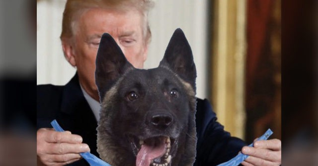 Leftists Angry Donald Trump Posts Photoshopped Image Honoring Dog