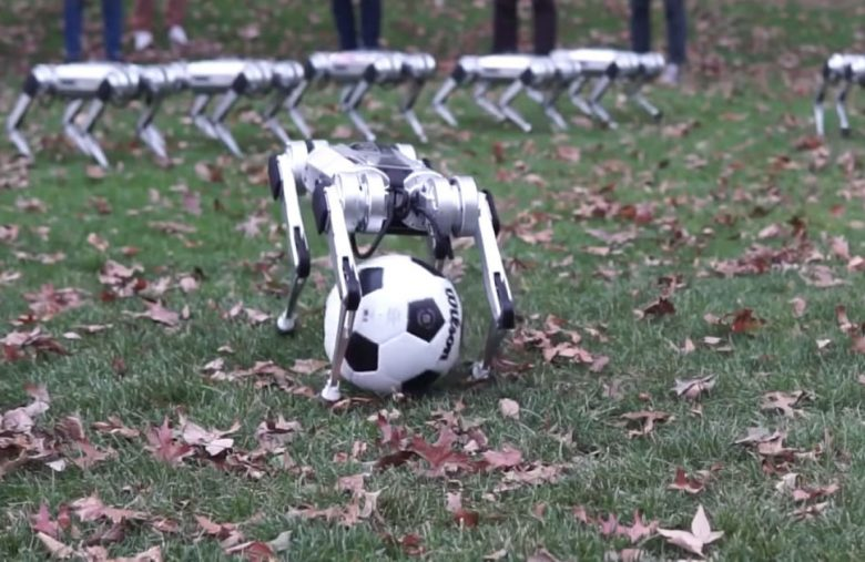 Watch a herd of MIT's Mini Cheetah robots frolic in the fall leaves