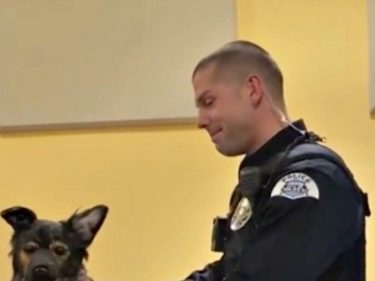Police Officer Fights Back Tears at Tribute to Fallen K9