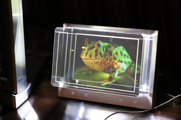 Looking Glass is targeting enterprises and eventually gamers with 8K holographic display