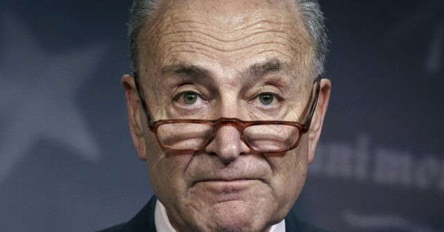 Chuck Schumer Defends Nancy Pelosi Withholding Impeachment Articles