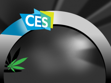 CES takes half-baked stance on cannabis