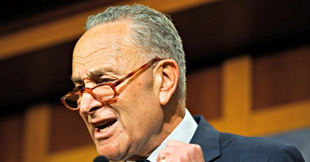 Schumer: McConnell's Impeachment Resolution a 'National Disgrace'