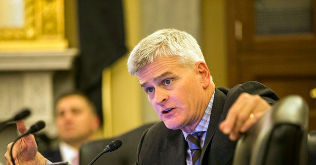 Bill Cassidy Calls for Infrastructure, 'All of the Above' Coronavirus Response