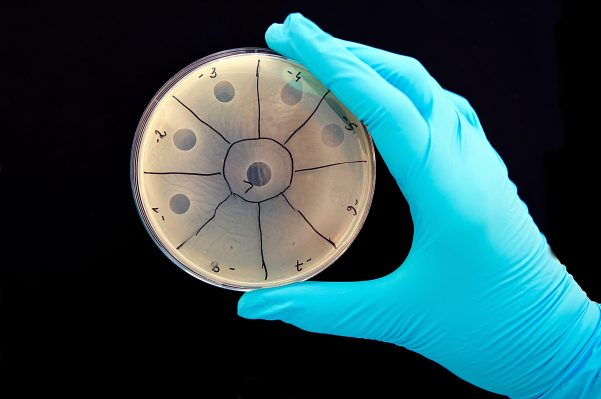 YC startup Felix wants to replace antibiotics with programmable viruses