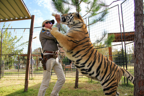 Original Content podcast: 'Tiger King' might be the wildest show on Netflix