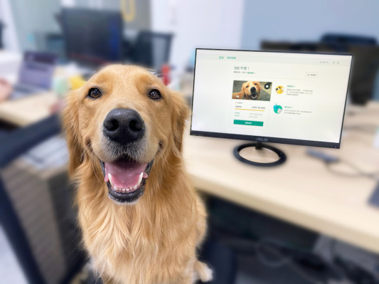 Hong Kong insurtech startup OneDegree launches its first product, medical coverage for pets