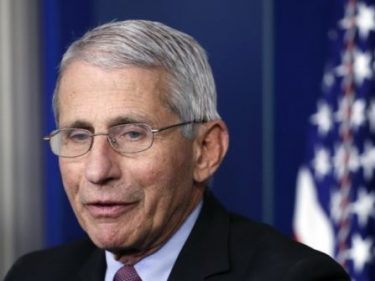 Fauci warns of 'suffering and death' if US reopens too soon – Breitbart