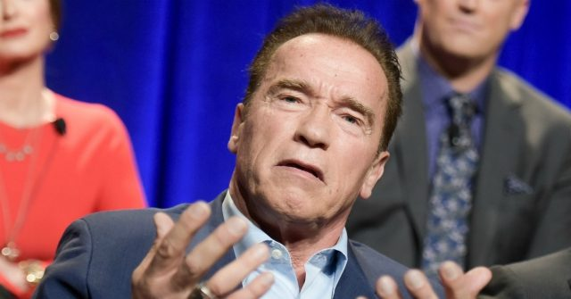 Arnold Schwarzenegger Says Anyone Making California's Mask Requirement Political Is an 'Absolute Moron'