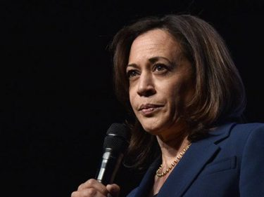 Silicon Valley Donors 'Happiest' with Kamala Harris as Joe Biden's VP