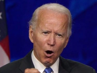 Hundreds of Former Bush, McCain Aides Endorse Biden for President