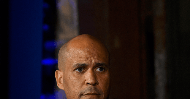 Booker: Trump Will 'Incite' His Base to Not Accept a Loss in November